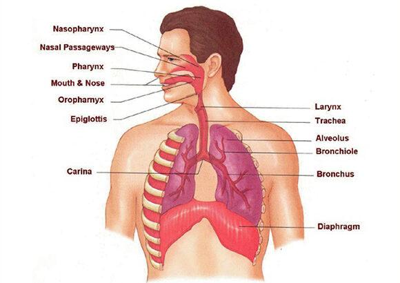 Respiratory Disorder